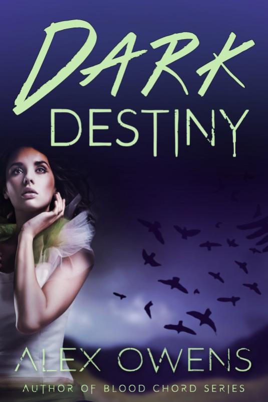 dark destiny working.jpg